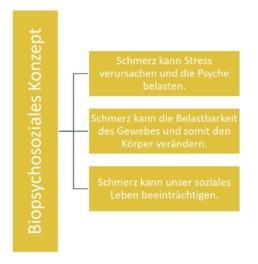 Praxis, Sophia Göhrig, Hauneck, Rotensee, Unterhaun. Bad Hersfeld, Physiotherapie, Heilpraktikerm Schmerzen